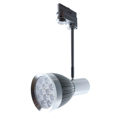 LED Spot Point 12W
